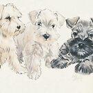 Miniature Schnauzer Puppies by BarbBarcikKeith