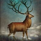 King of the Night by ChristianSchloe