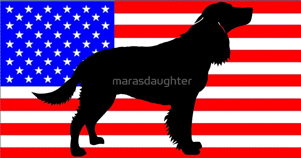american water spaniel silhouette on flag by marasdaughter