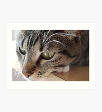 Concentrating Art Print