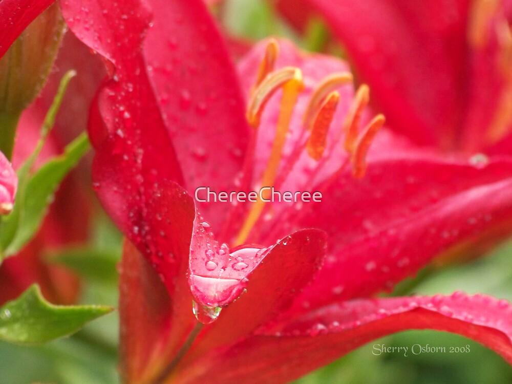 Lily Droplets by ChereeCheree