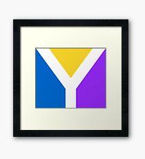 Y Flag Framed Print