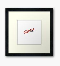 CC-0411 Cmdr. PONDS Aurebesh Framed Print