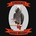 Einstein's Birdie Brigade African Grey Parrot by einsteinparrot