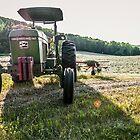 Deere on the Field by Rebecca Bryson
