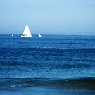 Sailing by Rebecca Bryson