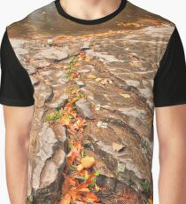 Autumn Crater Waterfall Graphic T-Shirt
