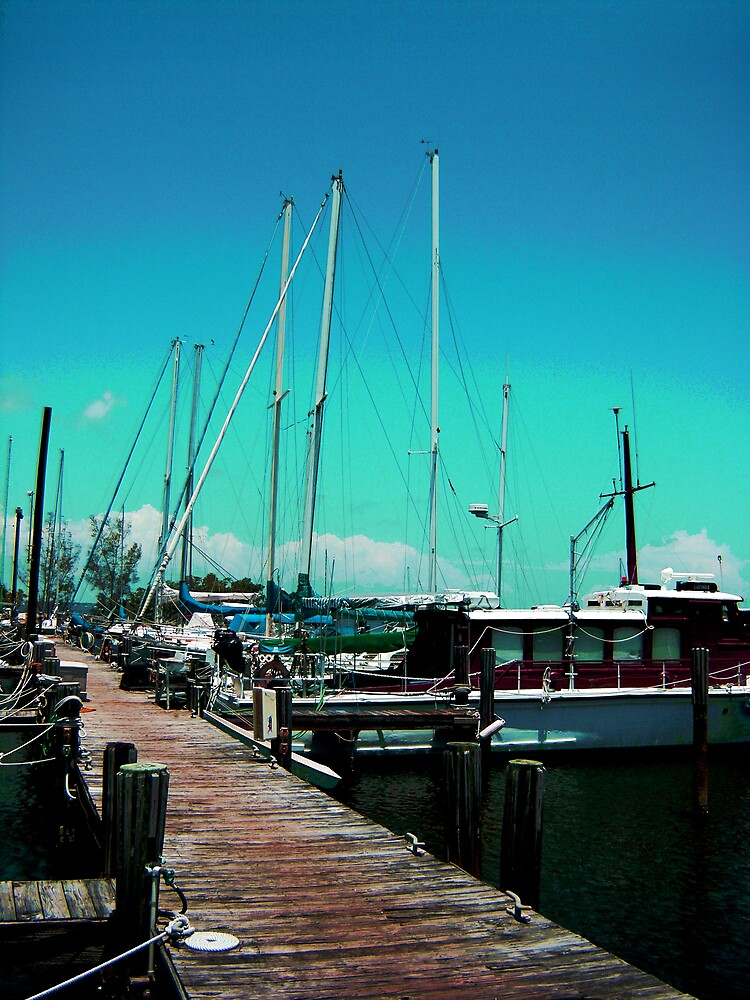 Melbourne Florida Boats by Sheila McCrea