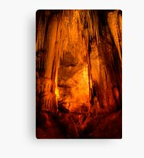 A face in the wall! Canvas Print