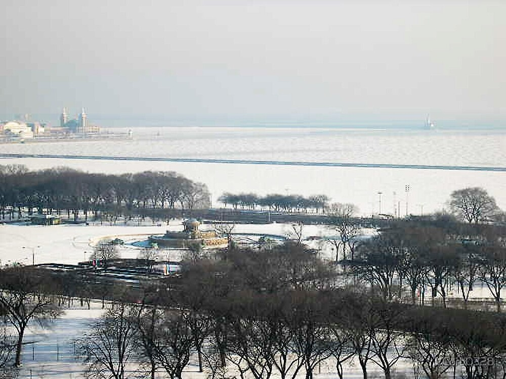 frozen chicago january 2008 by VCorb0328