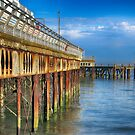 South Parade Pier by Teresa Zieba