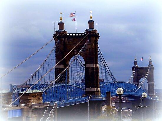 Suspension Bridge by Charmiene Maxwell-Batten