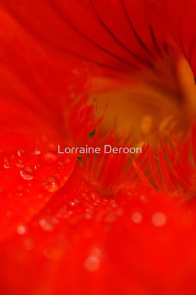 Allure by Lorraine Deroon