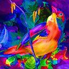 Aurora Bird Paradise by Delights