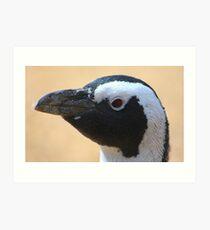 Penguin portrait......... Art Print