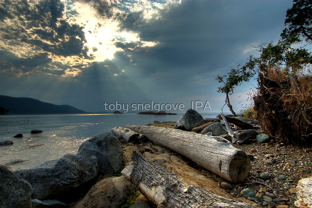 Before the Storm, Cabbage Island by toby snelgrove  IPA