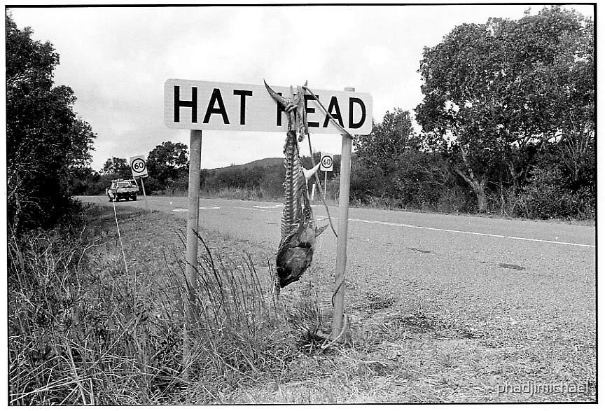 Hat Head Welcome by phadjimichael