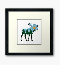 Moose Main  Framed Print