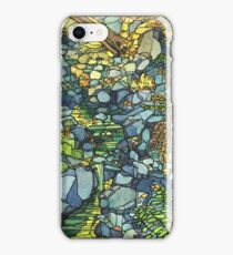 Cataract Falls iPhone Case/Skin