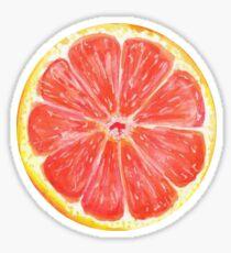 Grapefruit- plain Sticker