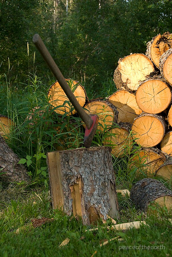 Woodpile by peaceofthenorth