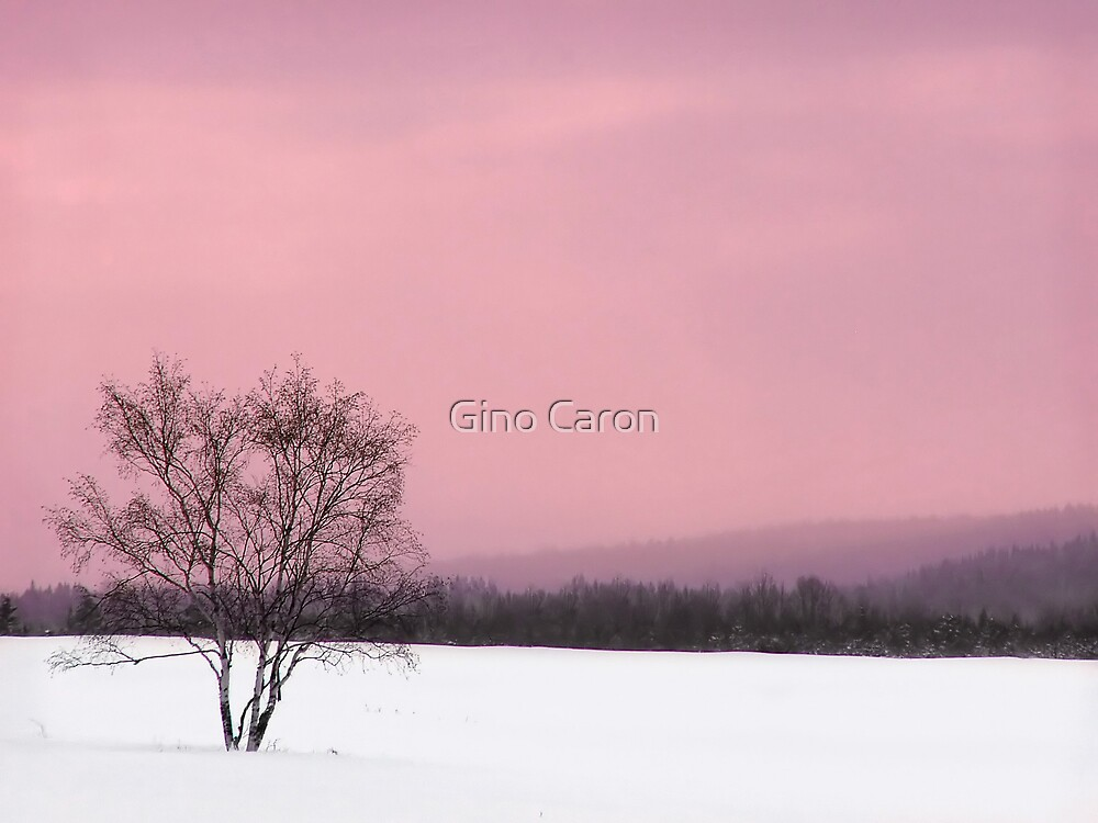 Loneliness by Gino Caron