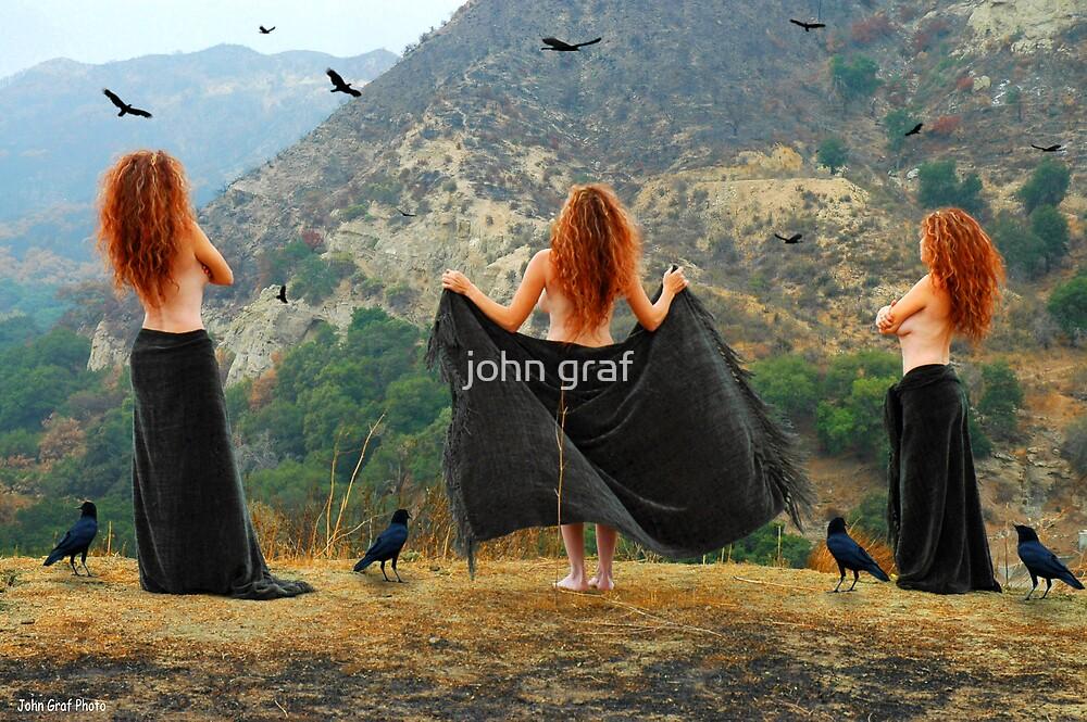 Julia's Crows by john graf