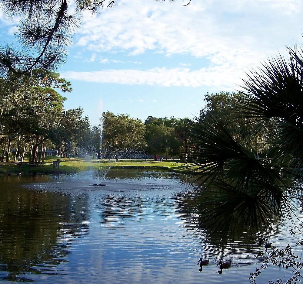 Arlington Park Serene Beauty by June Holbrook