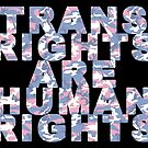 Trans Rights are Human Rights by theartivists