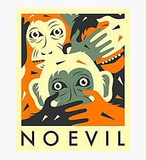 NO EVIL Photographic Print