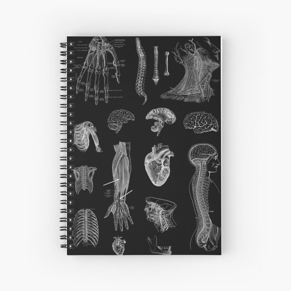 Impresión de la anatomía del vintage Cuaderno de espiral