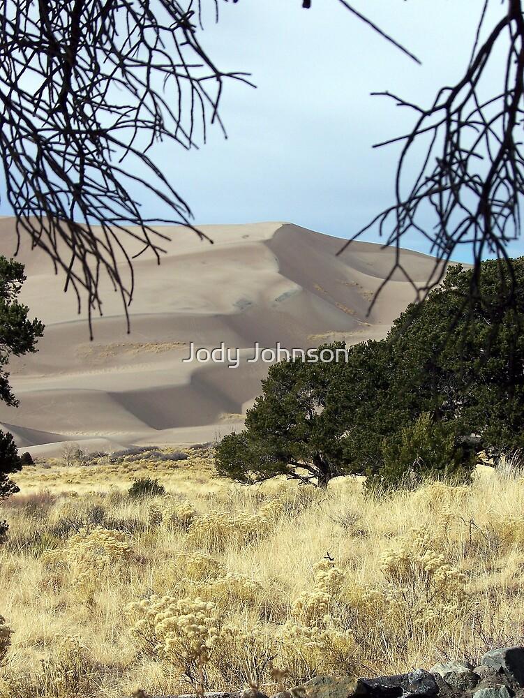 Great Sand Dunes National Park by Jody Johnson