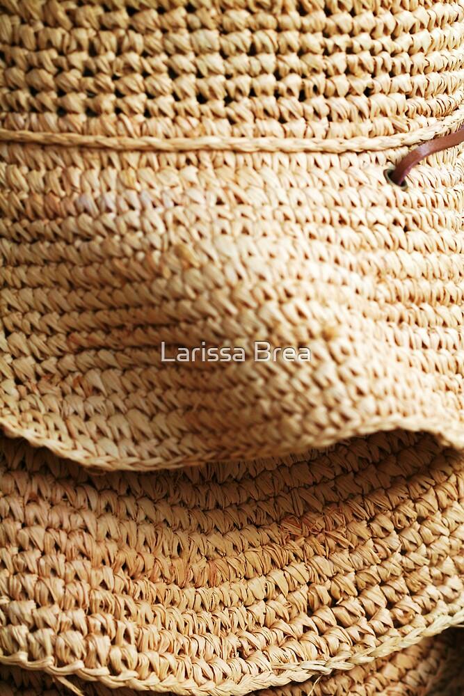 Hat Shape by Larissa Brea