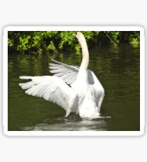 The Swan Sticker