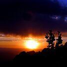 Sandia Sundown by © Loree McComb