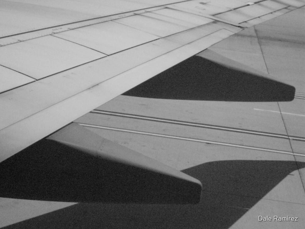 Winged Shadow by Dale Ramirez