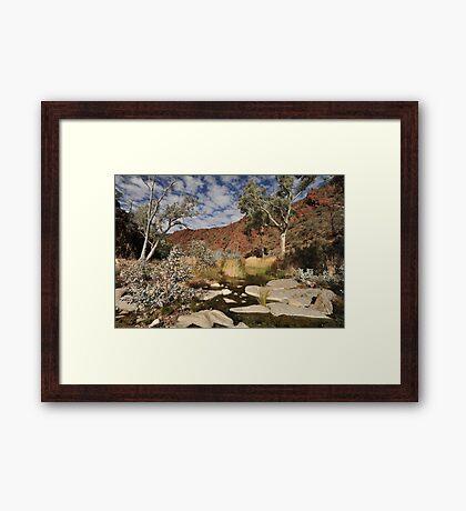 Australian outback spring Framed Print
