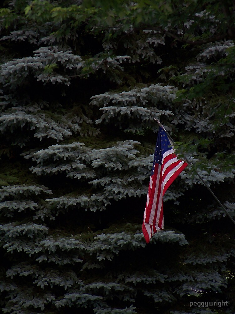 Remember Independence Day by peggywright