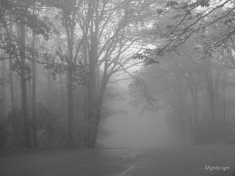 Foggy days II by Myndcrym