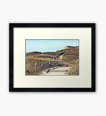 Beach Trail Framed Print