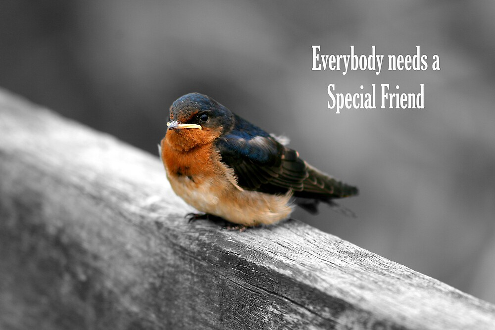 Everybody Needs a Special Friend (GC) by Dave Law