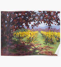 Fall Vineyard Painting Poster