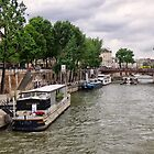 Paris River Seine by Lynn Bolt