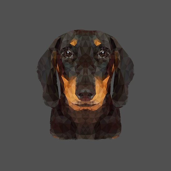 The Miniature Dachshund by petegrev