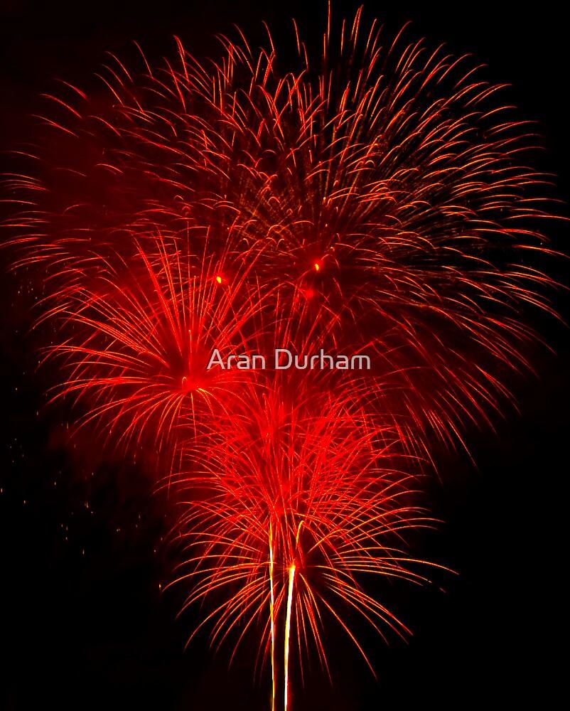 Fireworks by Aran Durham