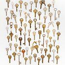 Found Keys by Bethany Helzer