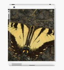 Tiger Swallowtail 1 iPad Case/Skin