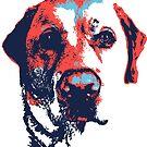Patriotic Labrador by rmcbuckeye