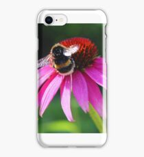 Bumble bee on pink flower  iPhone Case/Skin