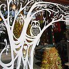owl in the window by Danielle Bain